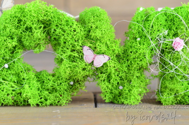 zielony chrobotek